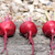 Three beetroots stock photo © naffarts