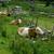 vacas · alpino · leite · alpes · montanha - foto stock © nailiaschwarz