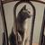 ロシア · 青 · 猫 · 肖像 · スタジオ · エレガントな - ストックフォト © nailiaschwarz