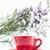 красный · Кубок · кофе · изолированный · горячей · белый - Сток-фото © nalinratphi