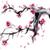 rama · cereza · floración · primavera - foto stock © naum