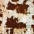 verde · vernice · legno · superficie · verniciato · segni - foto d'archivio © naumoid