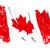 bandeira · Canadá · ilustração · 3d · tecido - foto stock © nazlisart