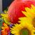 automne · tournesols · citrouille · mixte · automne · fleurs - photo stock © neirfy