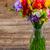 цветы · синий · фиолетовый · красный · цветок · весны - Сток-фото © neirfy