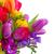 buquê · brilhante · flores · da · primavera · isolado · branco - foto stock © neirfy