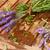 лаванды · белый · расслабиться · букет · духи - Сток-фото © neirfy