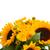 ひまわり · 花瓶 · 孤立した · 白 · 花 · 自然 - ストックフォト © neirfy