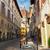 florence · Italië · stadsgezicht · kathedraal · bel · toren - stockfoto © neirfy