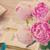 jardim · rosa · verão · caminho · flor - foto stock © neirfy