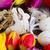 flores · da · primavera · ovos · de · páscoa · primavera · fresco · flores · páscoa - foto stock © neirfy