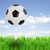 soccer ball over grass stock photo © neirfy