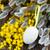 fransız · paskalya · yumurtası · taze · ahşap · masa · bahar · ahşap - stok fotoğraf © neirfy