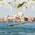 basiliek · Venetië · Italië · kanaal · vallen - stockfoto © neirfy
