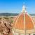 собора · Флоренция · Италия · мнение - Сток-фото © neirfy