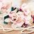 magnolia · virágok · rózsaszín · fehér · fa · égbolt - stock fotó © neirfy