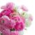 rózsaszín · fehér · virágok · kopott · üres · papír · jegyzet - stock fotó © neirfy