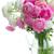 rózsaszín · fehér · virágok · kék · bokeh · rózsa - stock fotó © neirfy
