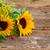 ひまわり · 緑の葉 · 花束 · 赤 · 液果類 · ガラス - ストックフォト © neirfy