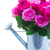 buquê · fresco · rosa · rosas · magenta · regador - foto stock © neirfy