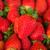 morangos · margaridas · fruto · verão · vermelho - foto stock © neirfy