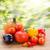 automne · récolte · jardin · citrouille · fruits · coloré - photo stock © neirfy