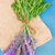 лаванды · цветы · саду · растущий · цветок · здоровья - Сток-фото © neirfy