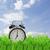 tijd · verandering · daglicht · spaargeld · wekker · kleurrijk - stockfoto © neirfy