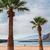 beach las teresitas tenerife spain stock photo © neirfy
