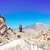 tenerife · ada · çam · orman · park · İspanya - stok fotoğraf © neirfy