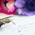 toll · antik · levelek · rózsaszín · virág · levél - stock fotó © neirfy