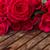букет · темно · розовый · роз · изолированный - Сток-фото © neirfy