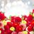 dahlia · bloemen · kan · gebruikt - stockfoto © neirfy