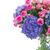 розовый · роз · синий · цветы · тюльпаны - Сток-фото © neirfy