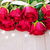 Rood · rozen · hout · donkere · valentijnsdag - stockfoto © neirfy