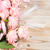 pink blooming roses on wood stock photo © neirfy