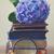 vecchio · libri · fiori · vintage · libro · aperto · fiori · bianchi - foto d'archivio © neirfy