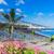 la · tenerife · célébrer · san · juan · vacances · île - photo stock © neirfy