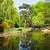 botanical garden of wroclaw poland stock photo © neirfy