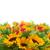 подсолнухи · границе · белый · цветок · саду · лет - Сток-фото © neirfy