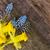 卵 · カラフル · 羽毛 · イースター · イースターエッグ · 明るい - ストックフォト © neirfy