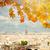 панорамный · мнение · реке · Эйфелева · башня · моста · Париж - Сток-фото © neirfy
