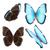 青 · 蝶 · 緑色の葉 · 翼 · 目 · デザイン - ストックフォト © neirfy