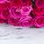 fresco · rosas · fronteira · amarelo · isolado · branco - foto stock © neirfy