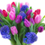 bouquet of blue hyacinth and tulips stock photo © neirfy