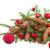 вечнозеленый · красный · Рождества · мяча · белый - Сток-фото © neirfy