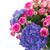 pot · rosa · rose · fresche · scheda · vuota · bella - foto d'archivio © neirfy