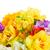 narcis · bloemen · grens · veelkleurig · Blauw · bokeh - stockfoto © neirfy
