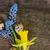 primer · plano · flores · flor · textura · verano · verde - foto stock © neirfy