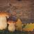 ヤマドリタケ属の食菌 · キノコ · 新鮮な · 生 · バスケット - ストックフォト © neirfy
